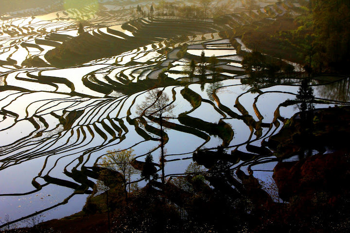 Photograph FIELD by FANG YI 99 on 500px