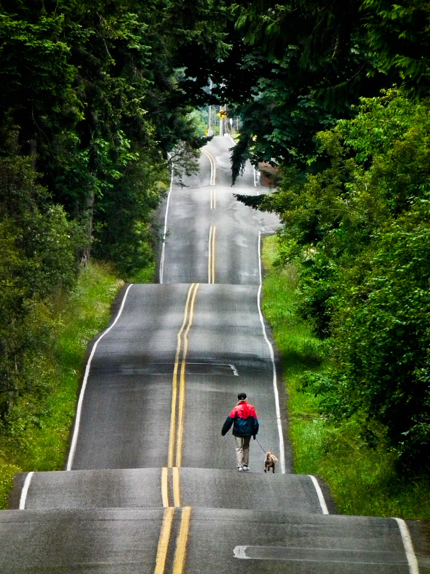 Photograph I Love Driving the Backroads... by Ruthanne Annaloro on 500px