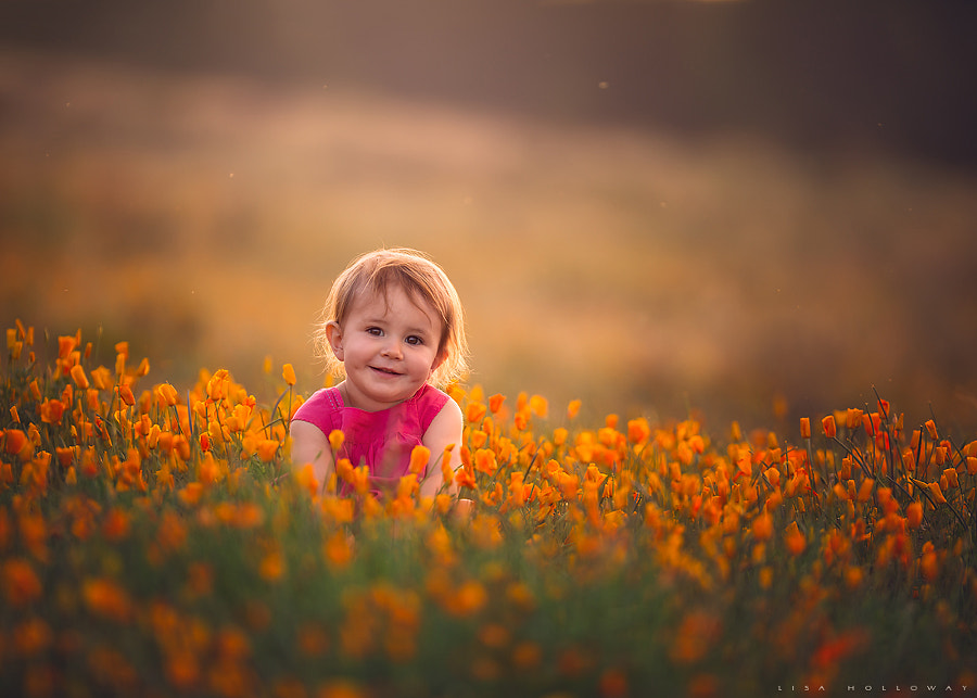 Golden Hour by Lisa Holloway
