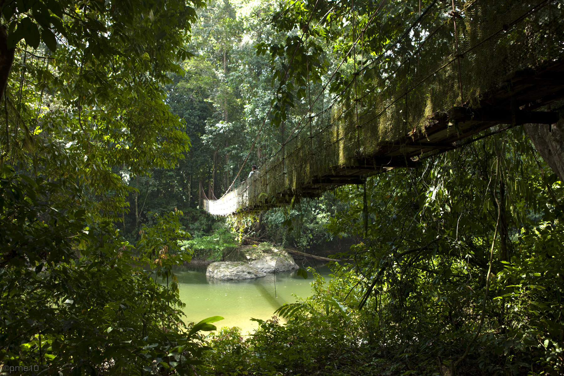 Photograph Danum Valley by Patrick Meier on 500px