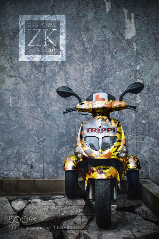 Photograph Trippi by Zain Kapasi on 500px