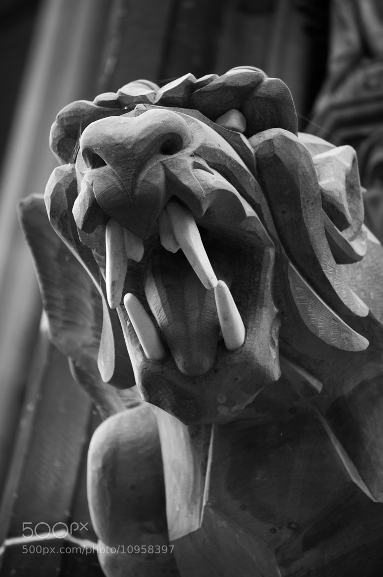 Photograph Gargoyle! by Michael Wilby on 500px
