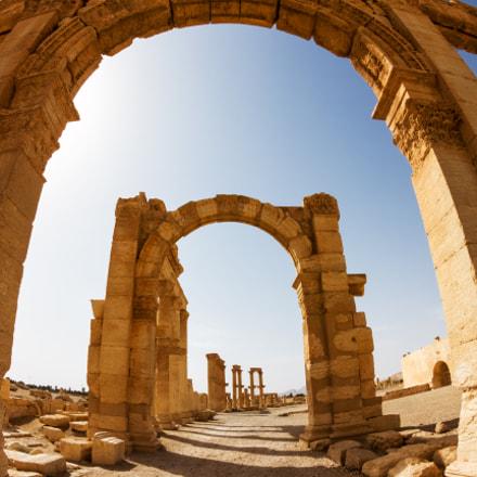 Palmyra II