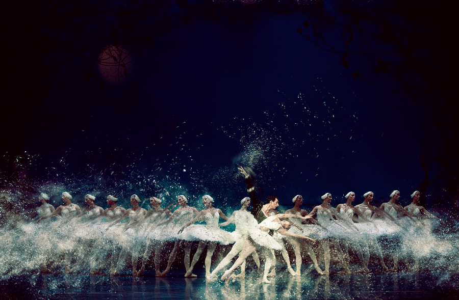 Swan Lake Nocture VI by Pistol Wish ™ on 500px.com