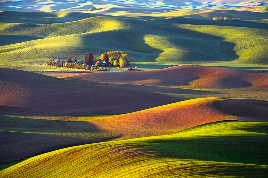 Photograph Palouse Plantation by Ray Green on 500px