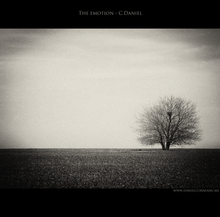 Photograph The emotion by Corneanu Daniel on 500px