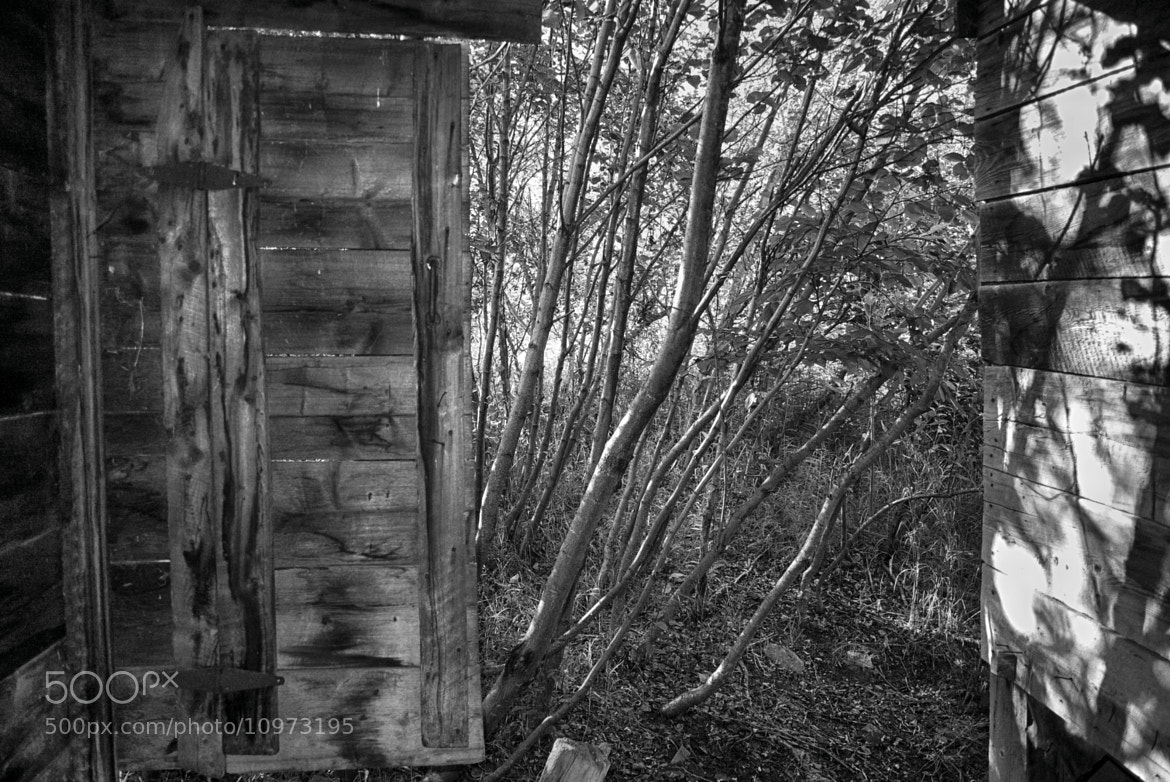 Photograph Barn Doors and Trees by Phil Ackley on 500px