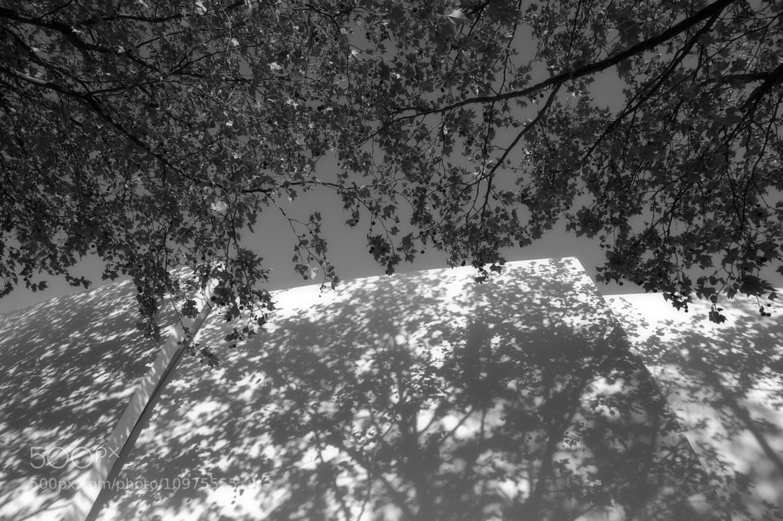 Photograph Between 2 world by Sombat Sunthoncharu on 500px