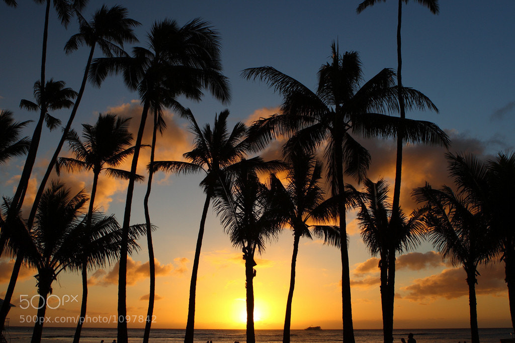 Photograph Hawaiian Sunset by Jaa Ice on 500px