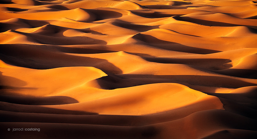 Desert of Dreams