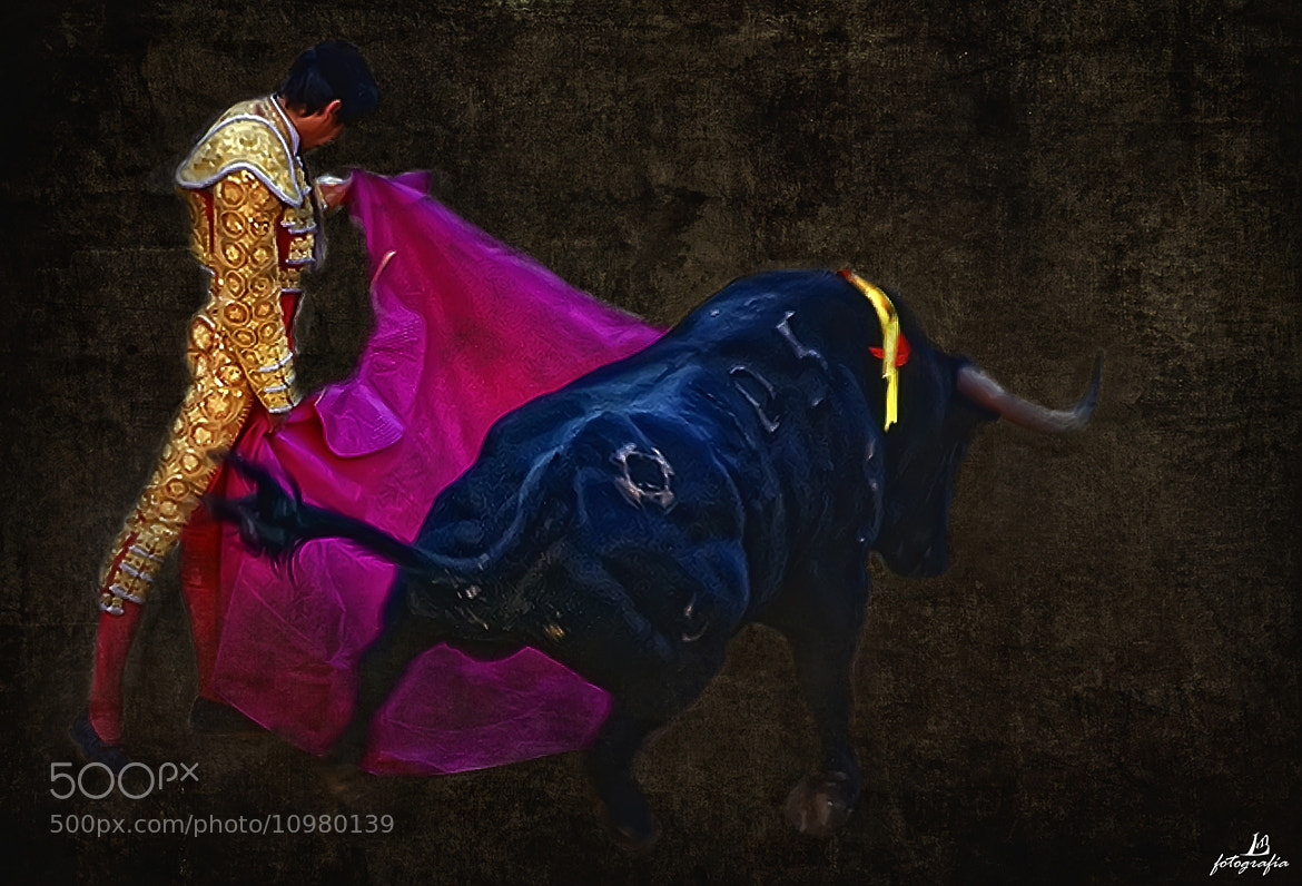 Photograph Serie Toros 1 by Manuel Lancha on 500px