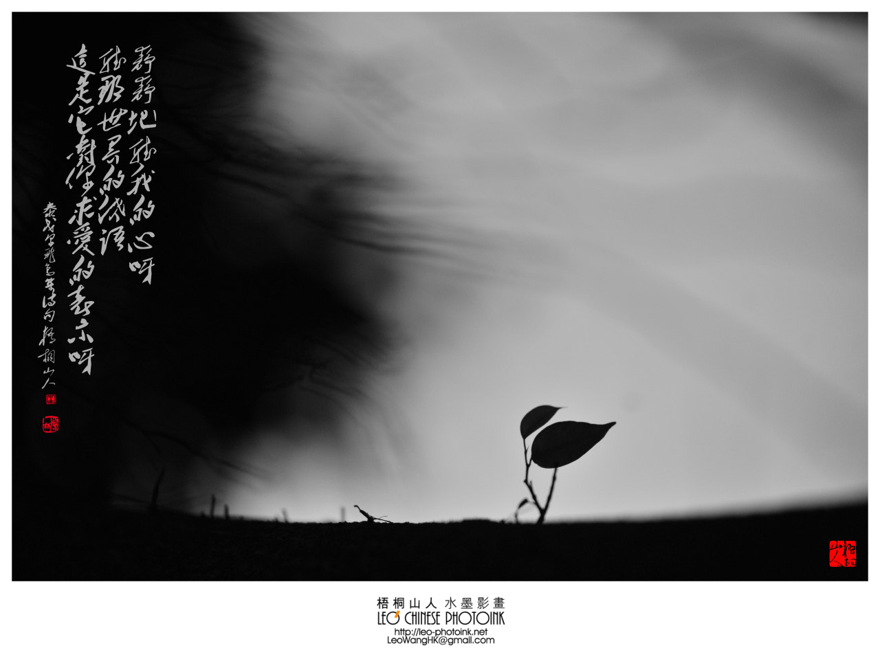 Photograph Whisper|風語20120720-1# by Leo Wang on 500px