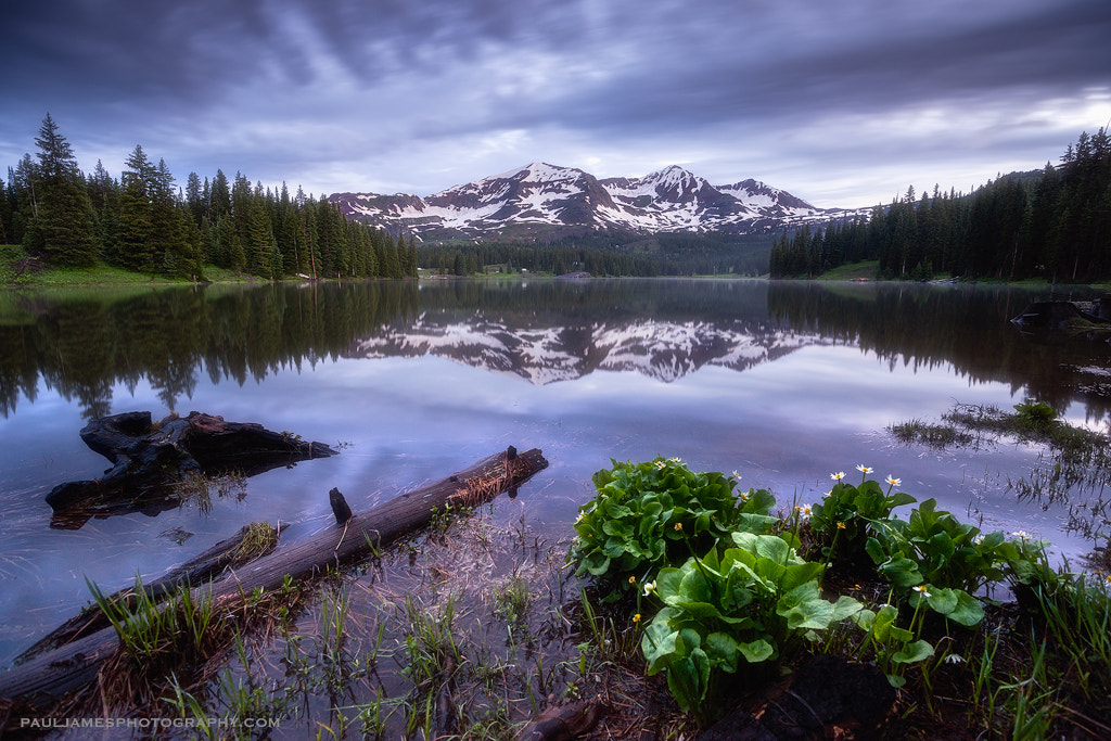 Photograph Morning Peace by Paul James on 500px