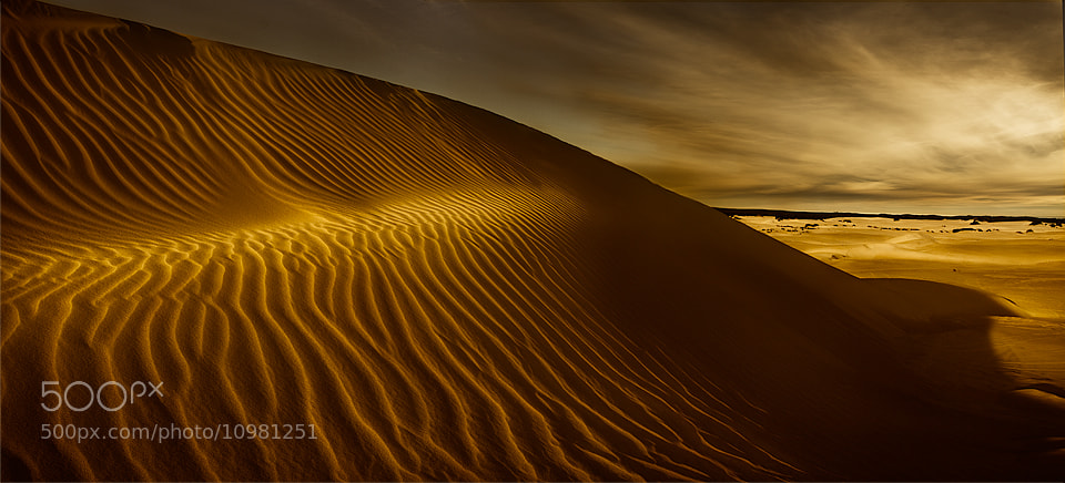 Photograph Sand dunes by Grant Patterson on 500px