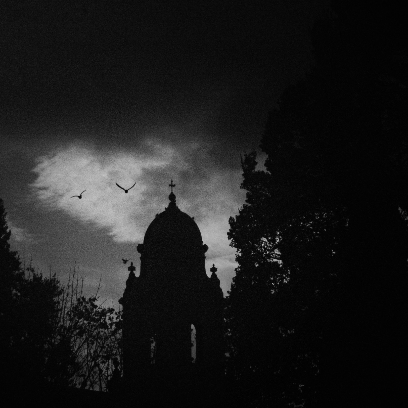 Photograph Spooks by Jim Downie on 500px
