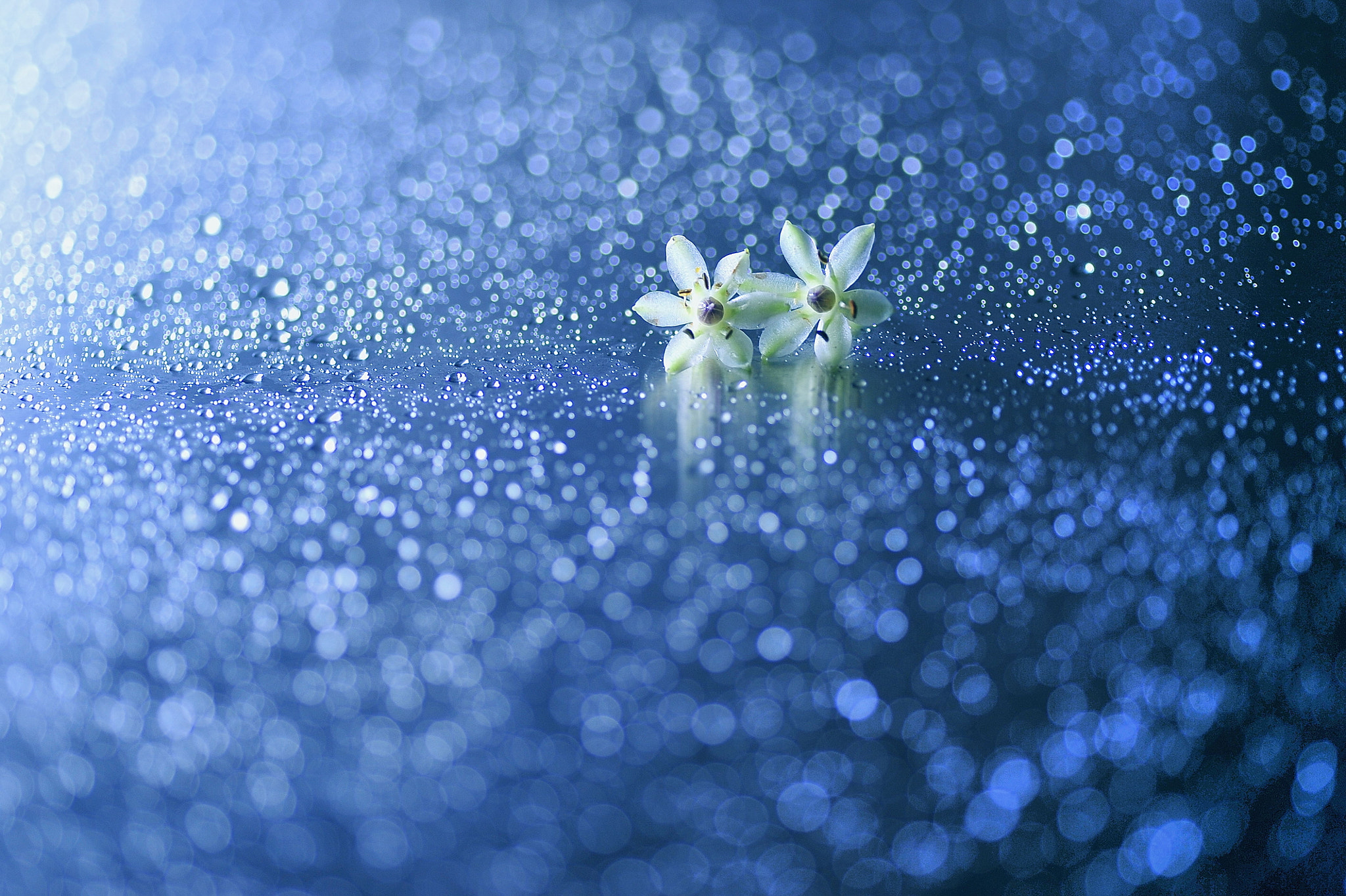 Photograph Milky Way Love by Lafugue Logos   on 500px