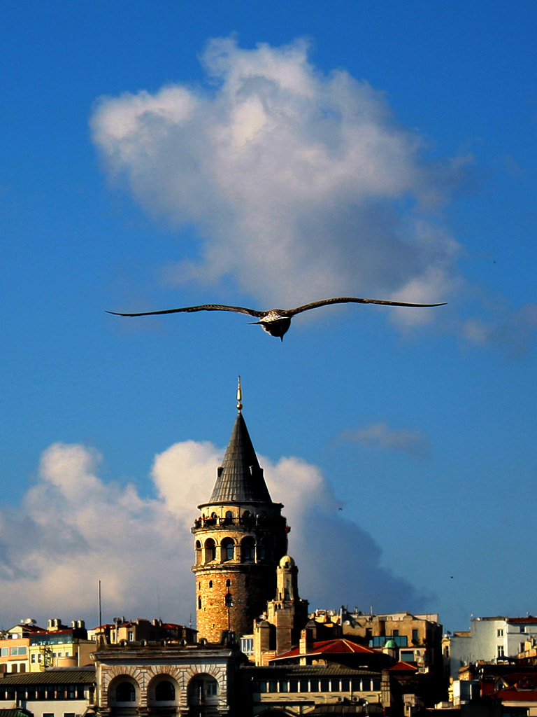 Photograph The Galata Tower-2 by MURAT FINDIK on 500px