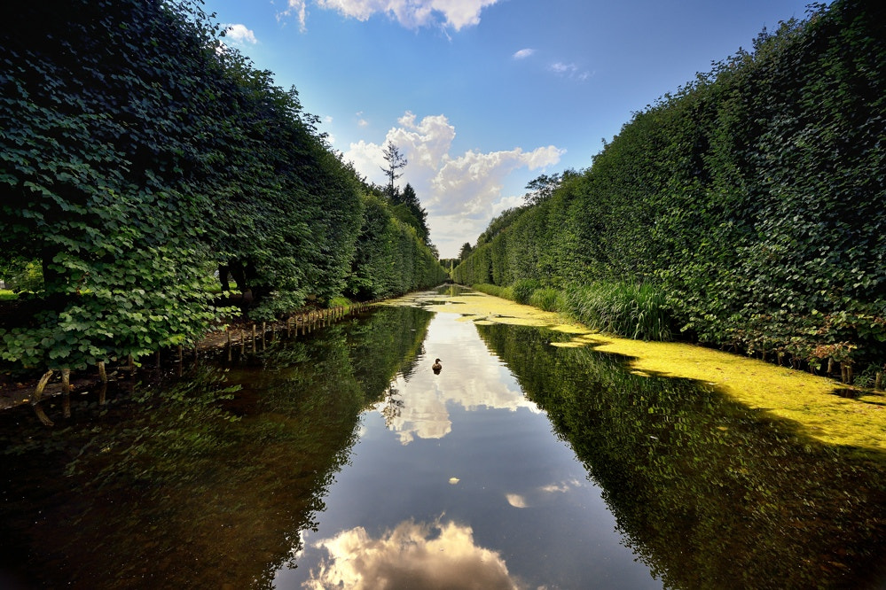Photograph Park in Gdansk Oliwa 5 by Mirek  . on 500px