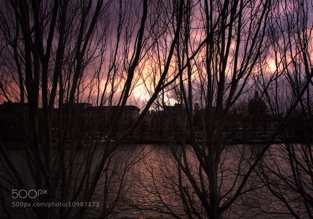 Photograph Seine low-key by Beau Rivage on 500px