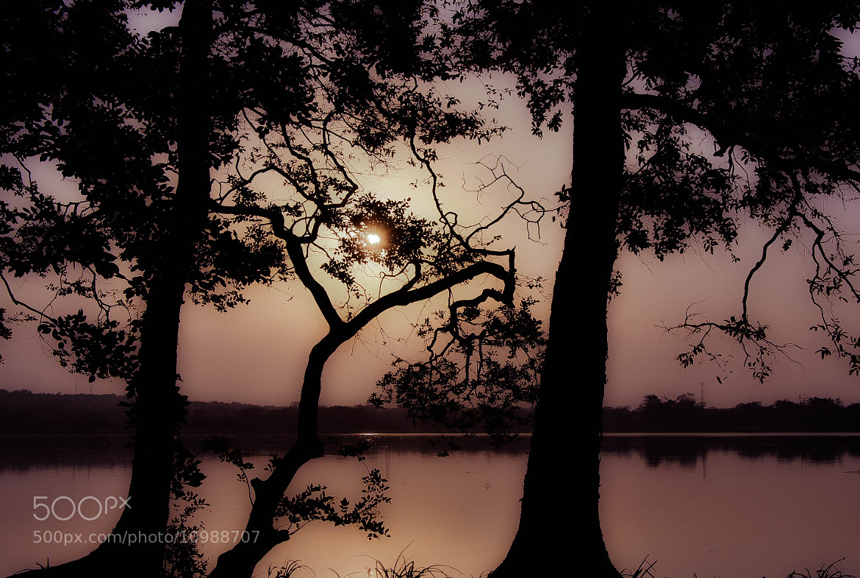 Photograph Sri Lanka Sunset 2 by julian john on 500px