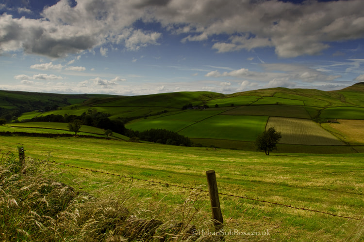 Photograph fields by Brian Sayle on 500px