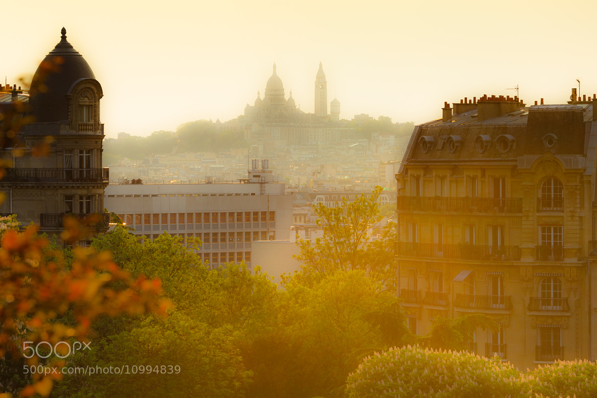 Photograph Montmartre From The Buttes Chaumont by Anth Optic on 500px