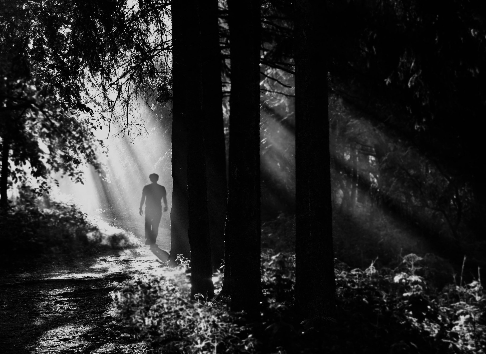 Photograph The Man In The Forest by Dmytro Zaverukha on 500px