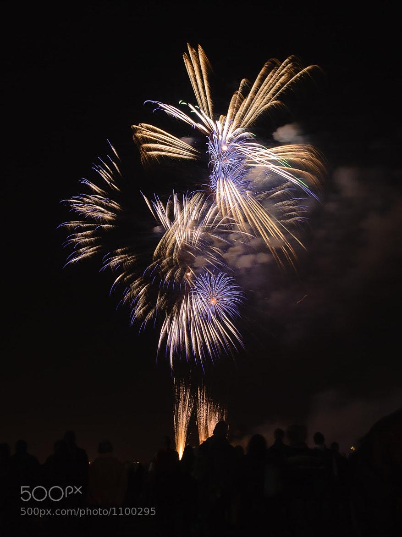Photograph Fireworks at Blackheath by Sean Ellingham on 500px