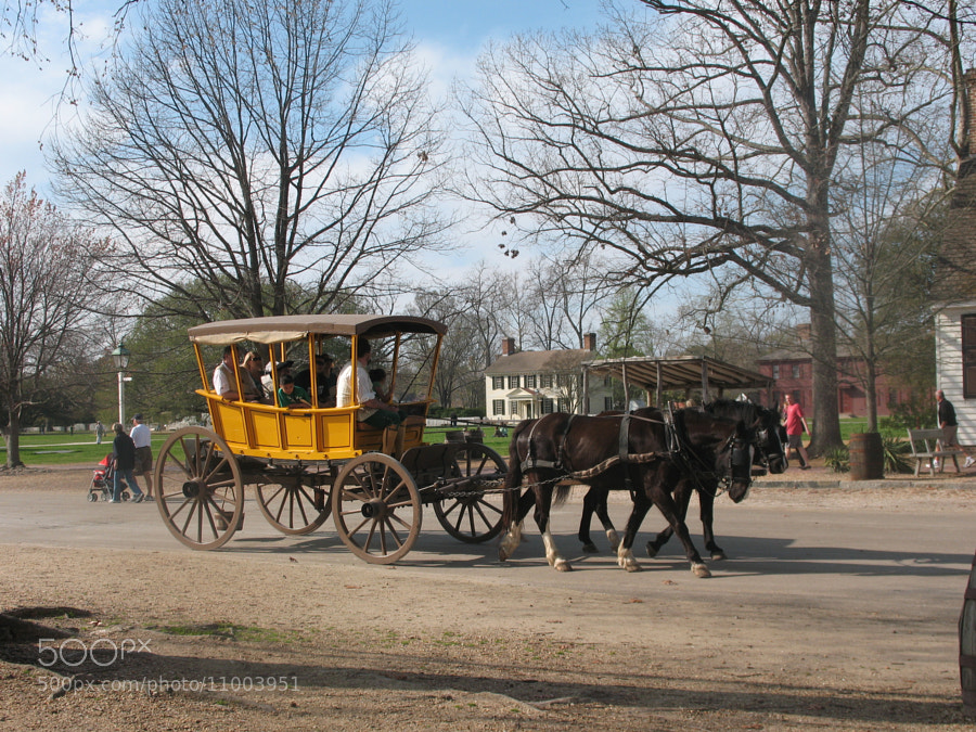 Photograph Ride on horse buggy by Jean-Claude Guilbaud on 500px