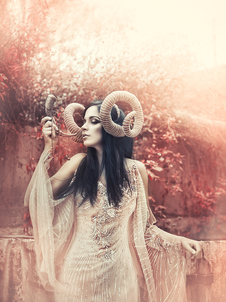 Photograph Ancient wood by Rebeca  Saray on 500px