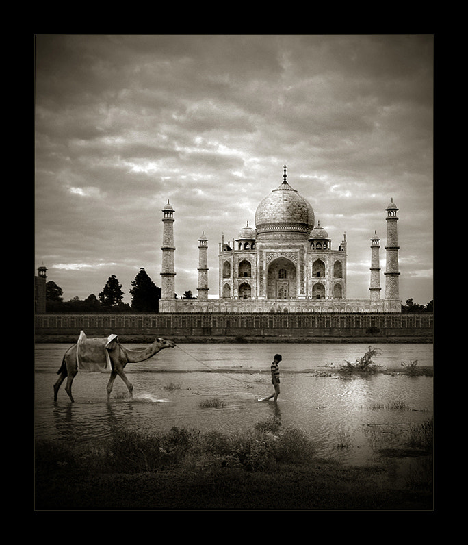 Photograph Taj Mahal by Thamer Al-Tassan on 500px