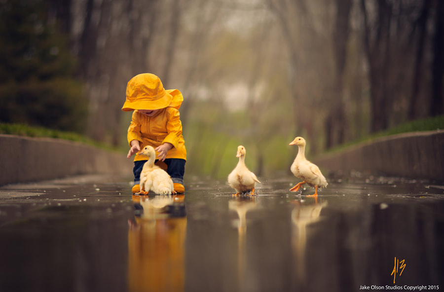Rainy Day Orange by Jake Olson Studios