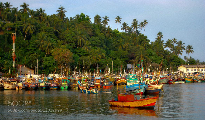 Photograph Fishing boats - Sri Lanka by julian john on 500px