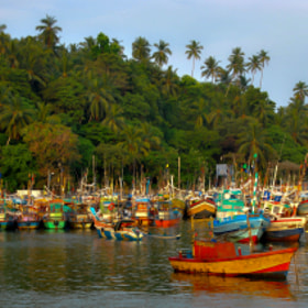 Fishing boats - Sri Lanka by julian john (sandtasticdays)) on 500px.com