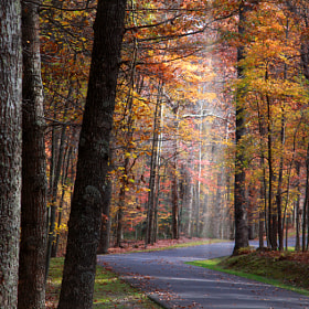 Autumn in West Virginia by S N E H I T  (Snehit)) on 500px.com