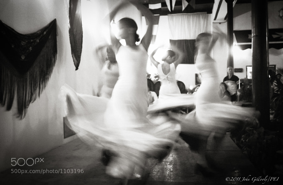 Photograph Flamenco in Havana by John Gillooly on 500px