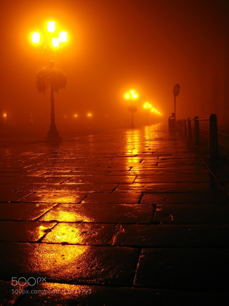 Photograph Padua in the fog by Mauro Procaccini on 500px