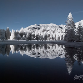 Winter in The Summer by Gary Randall (GaryRandall)) on 500px.com