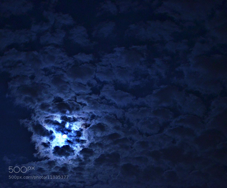 Photograph Untitled by Rodion Shaikhutdinov on 500px
