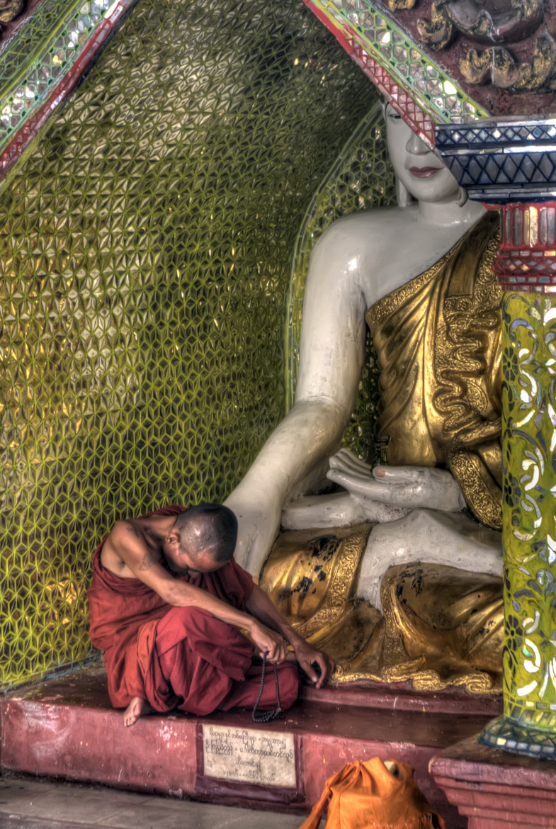 Photograph Sleepy Monk - Color by David Norris on 500px