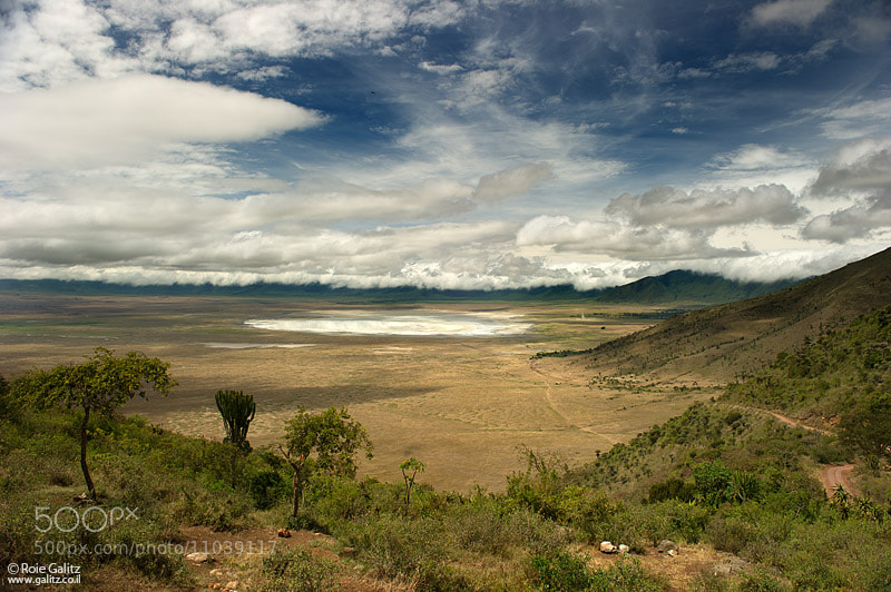 Photograph Ngorongoro Caldera by Roie Galitz on 500px