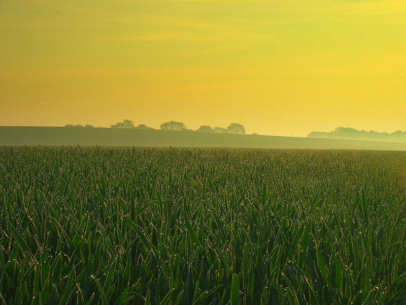 Photograph suffolk sunrise by Lee Patterson on 500px