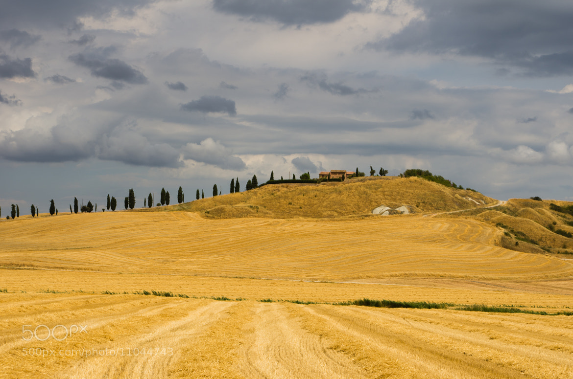 Photograph Tuscan landscape by Ale S. on 500px