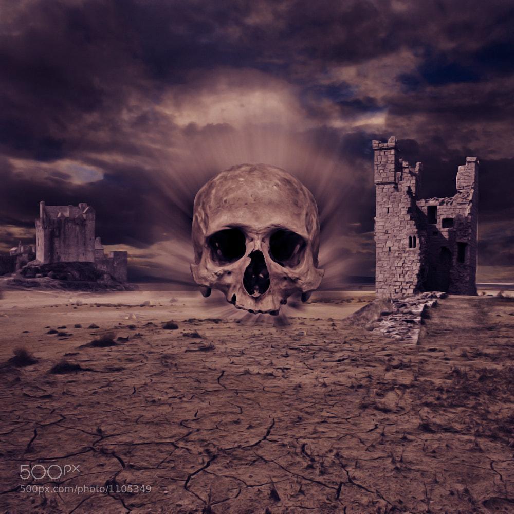 Photograph Skull by Ilja Osthoff on 500px