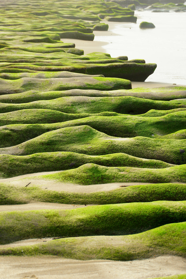 Photograph Stone Trench of Laomei Coast by liu han-lin on 500px