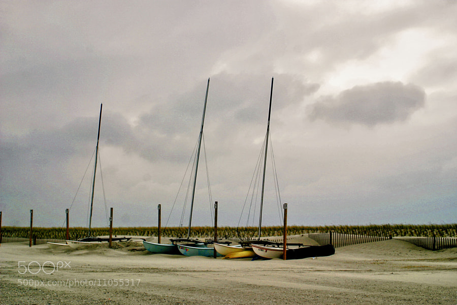 Photograph Stone Harbor Catamarans by Sonny Hamauchi on 500px
