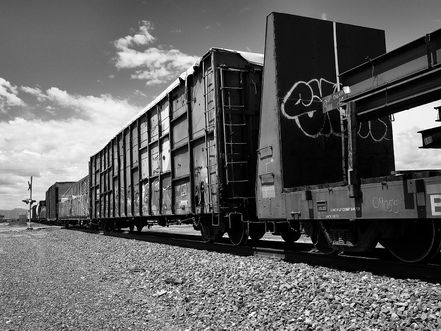Photograph Freight Train by Nancy Lundebjerg on 500px