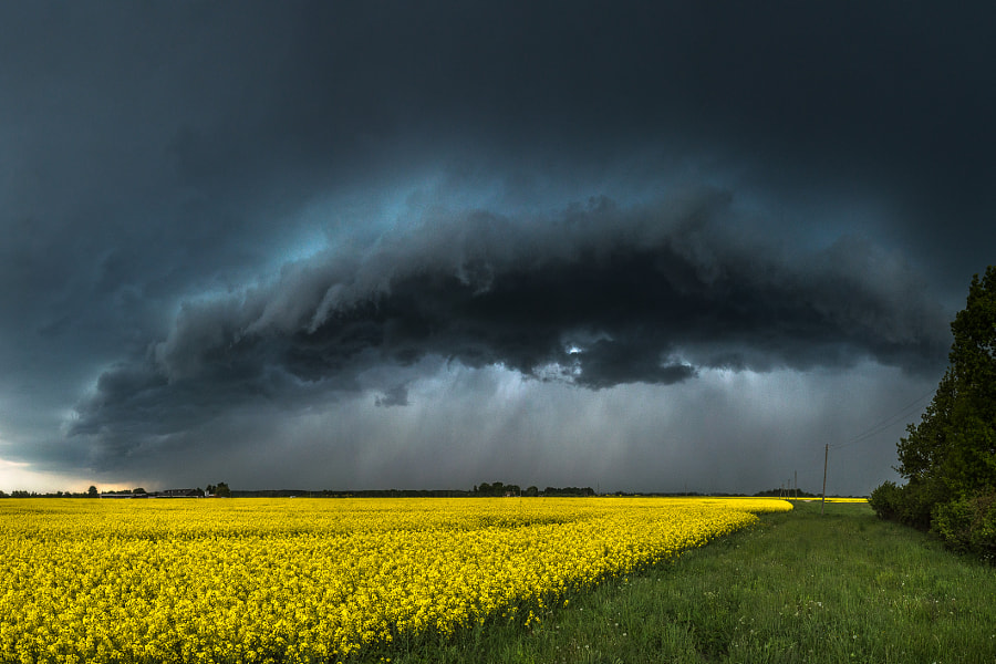 Thunder fields by Jānis Paļulis on 500px.com