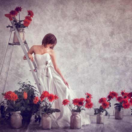 Bride and chrysanthemums