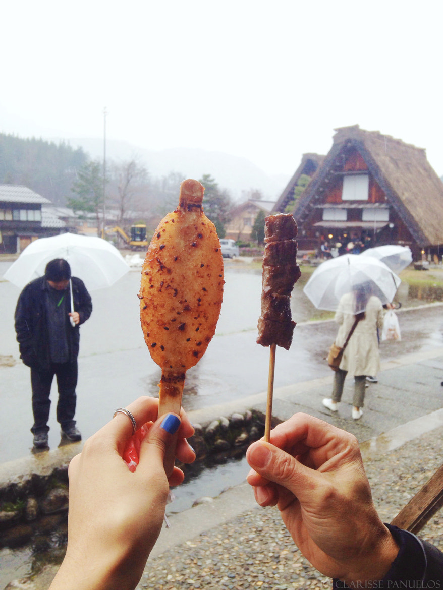 763c41d5ca0bb1881b85b712599a4e04 - Japan Travel Blog April 2015: Shirakawa-go